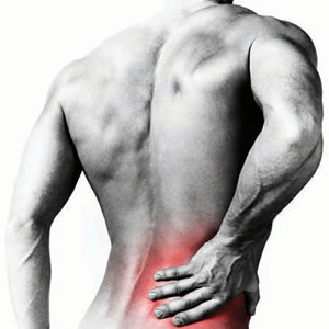 Low back and Spine can be affected by Osteoarthritis